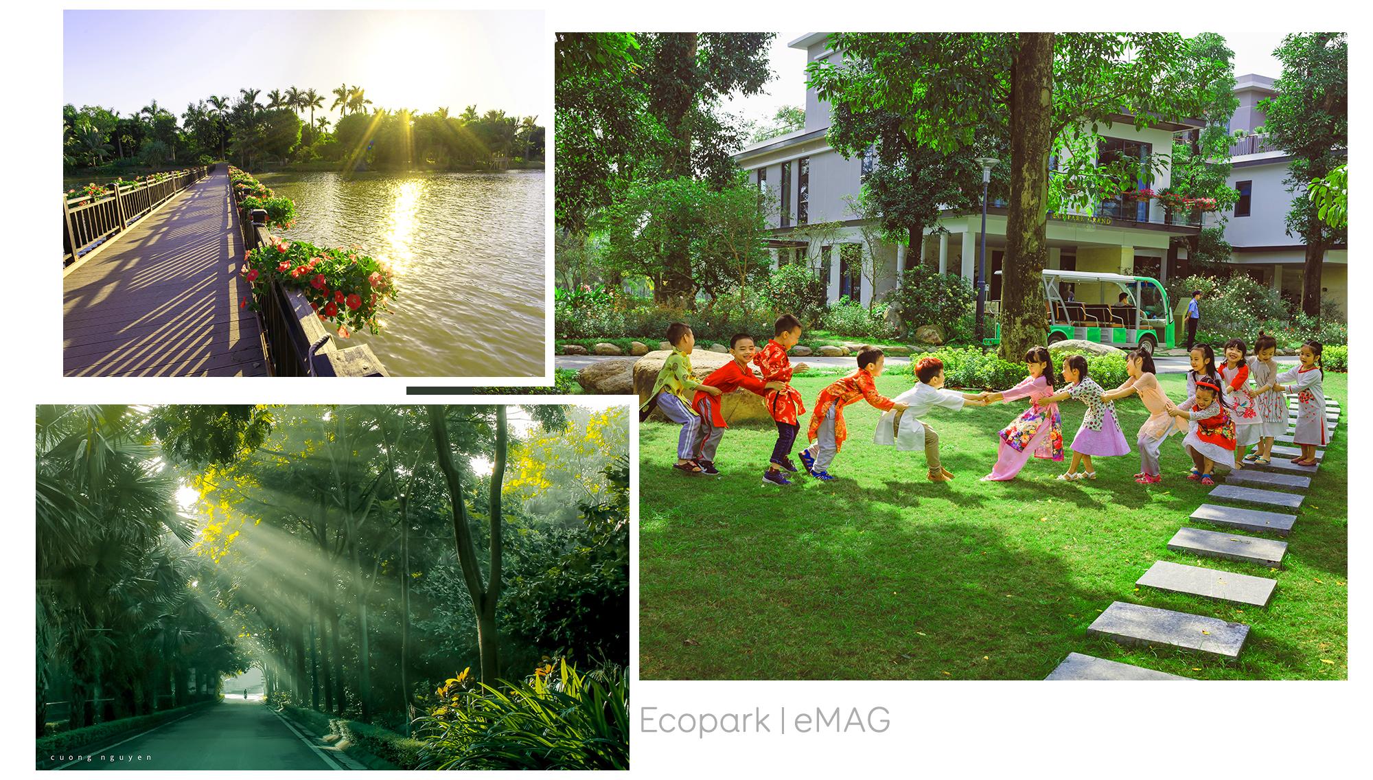 Tiện ích Ecopark